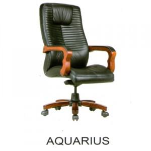 Kursi Direktur Fantoni Aquarius