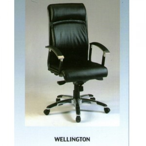 Kursi Direktur Fantoni Wellington